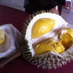Wordless Wednesday #10 : Durian Musang King